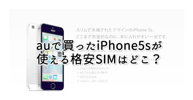 iPhone5s(au)がSIMロック解除なしで使える格安SIMを調べてみたトップ画像