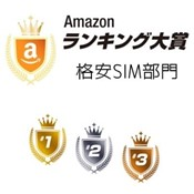 Amazon 格安SIM売上ランキング2016 トップはmineo!